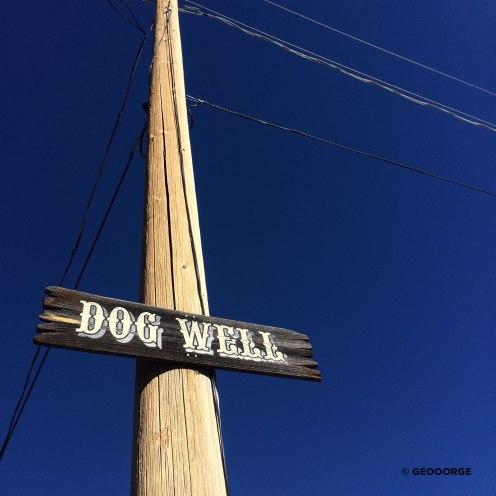 GEOOORGE-DogWell